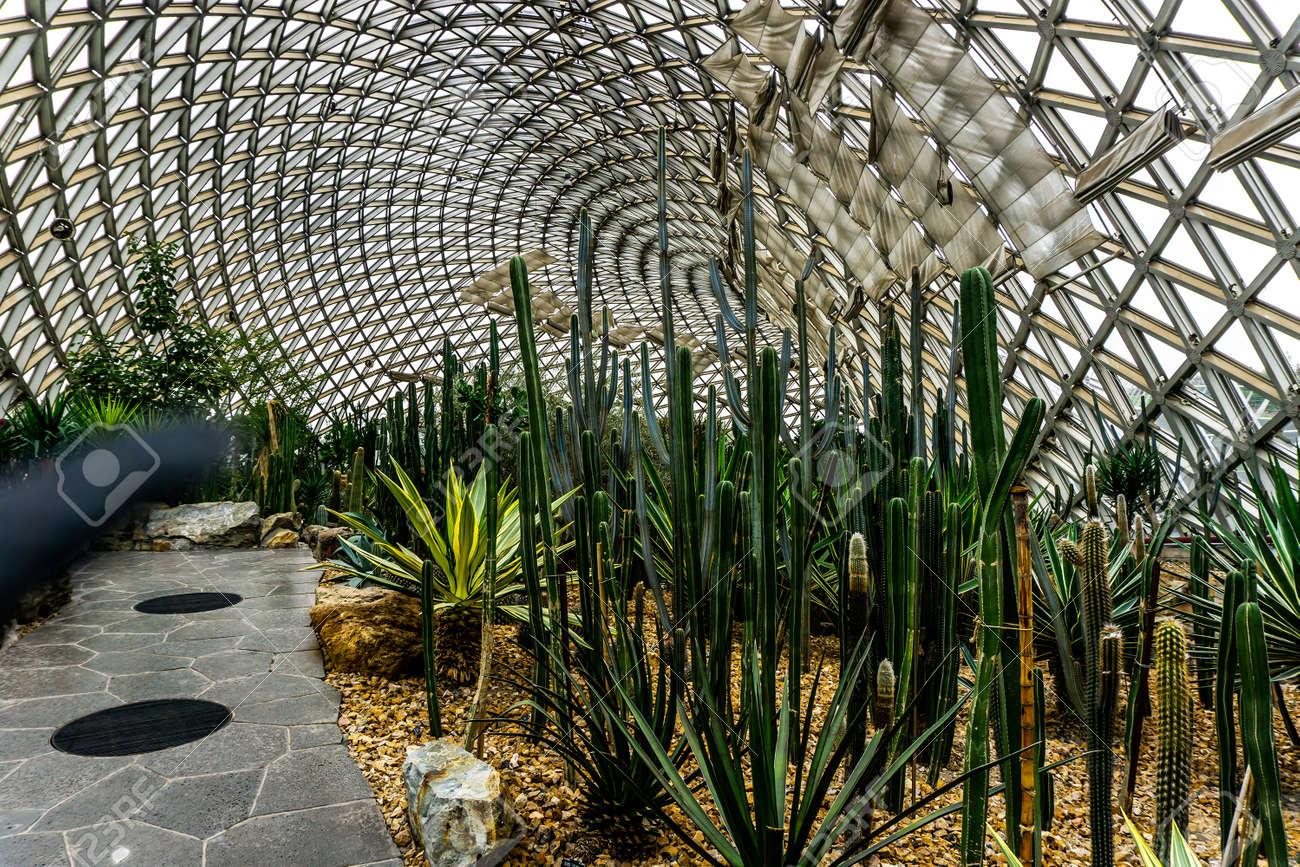 Enjoyable China Shanghai Botanical Garden Greenhouse Dry Desert Climate Home Interior And Landscaping Oversignezvosmurscom