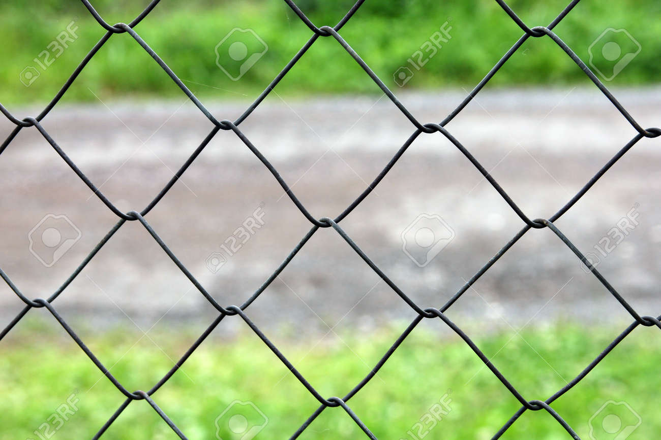 Mesh Netting Galvanized On The Background Of The Road And Grass ...