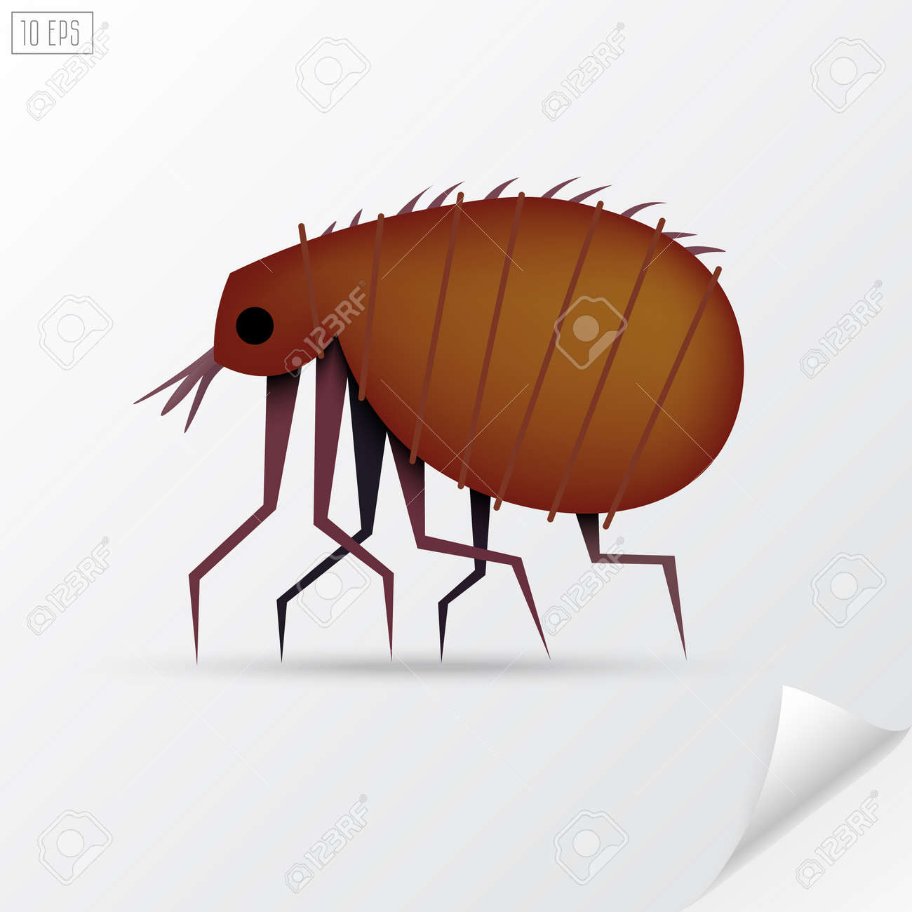 Cartoon brown insect flea in material style - 52131228