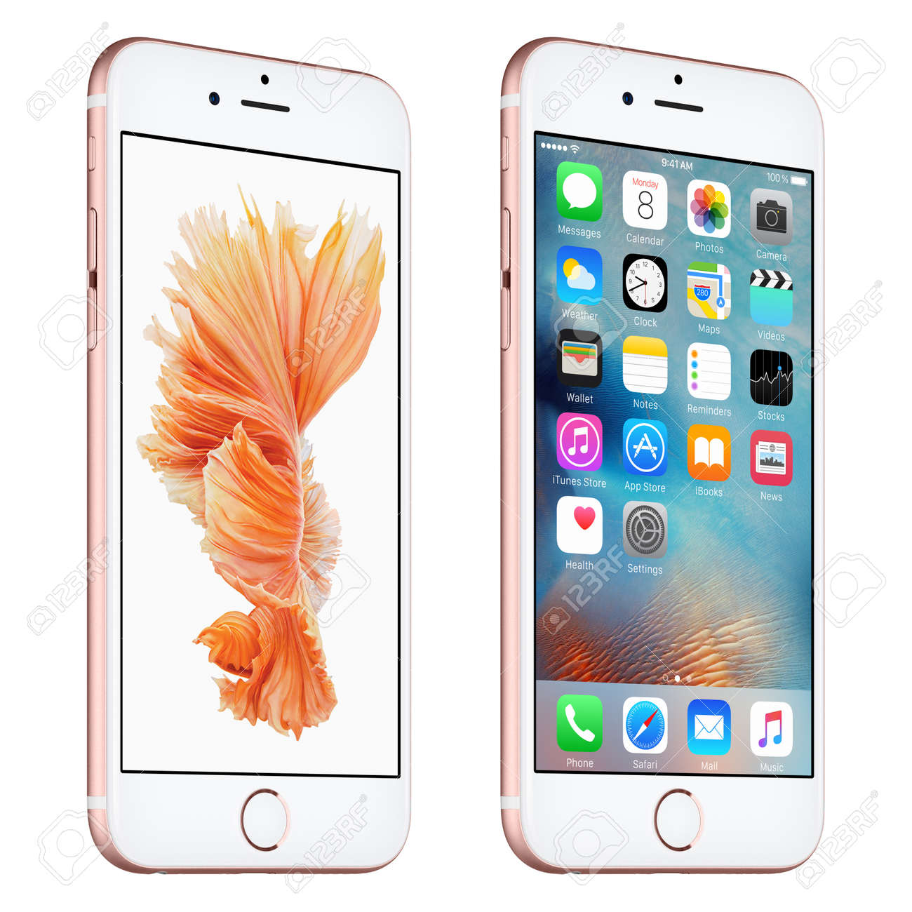 Varna, Bulgaria - October 24, 2015: Rose Gold Apple iPhone 6S rotated at a slight angle bottom up view with iOS 9 mobile operating system and Siamese Fighting Fish Dynamic Wallpaper on the screen. Isolated on white. - 53943776