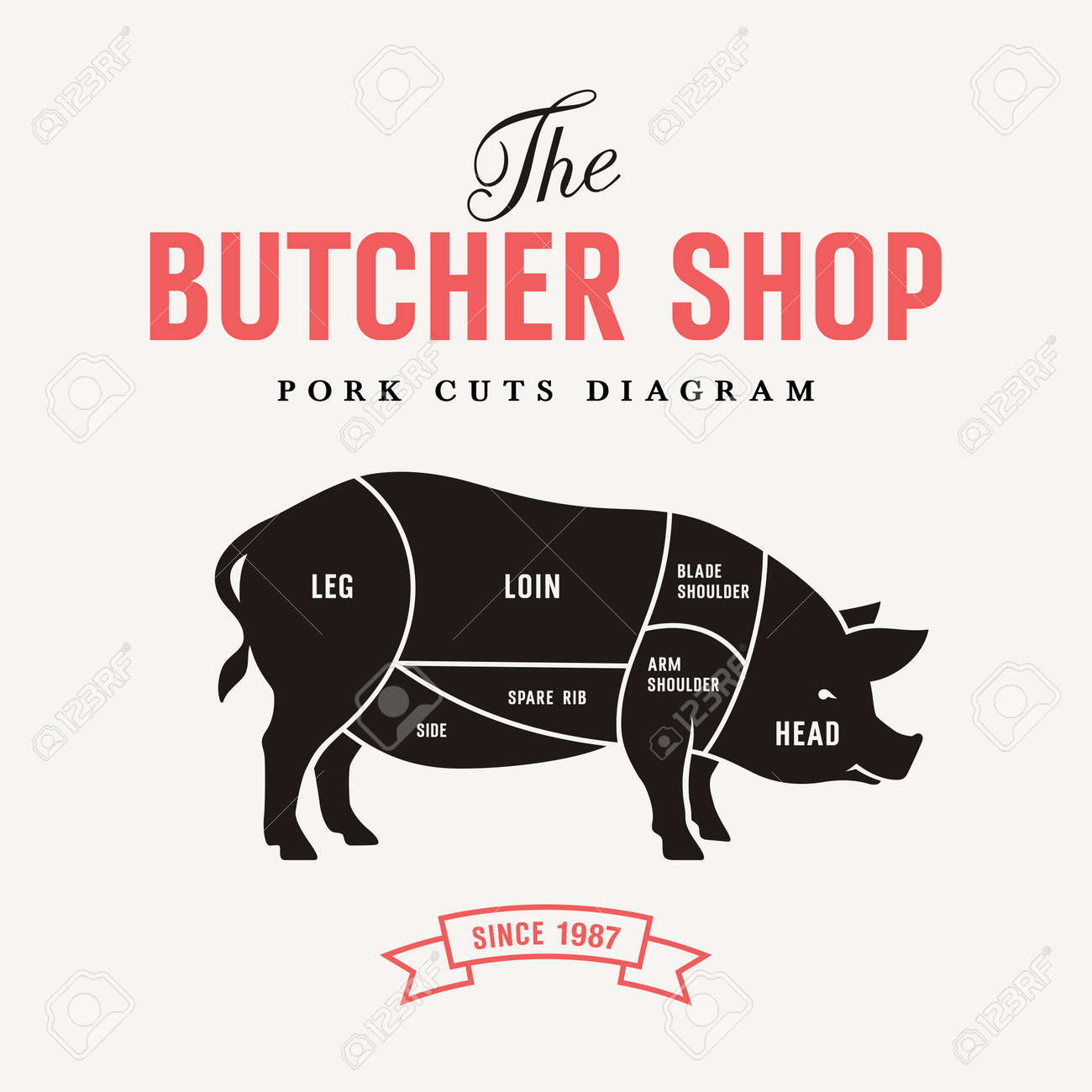 Pork Cuts Diagram, Vector Illustration For Your Design Royalty Free ...