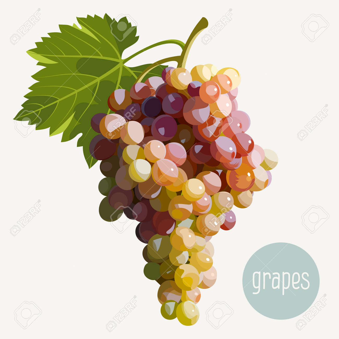 Vector illustration of a bunch of grapes - 35270812