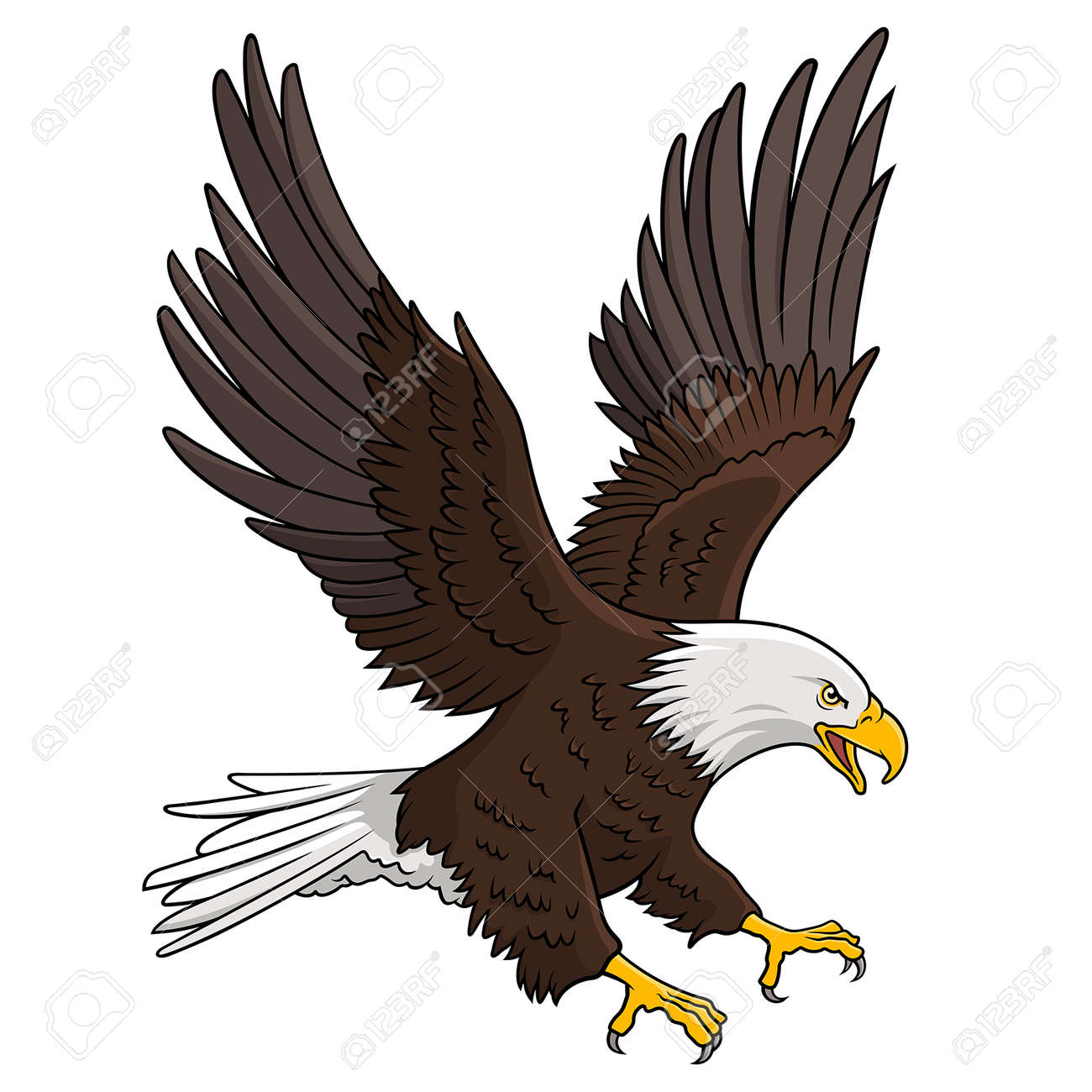 Bald Eagle isolated on white. This illustration can be used as a print on T-shirts, tattoo element or other uses - 55953256