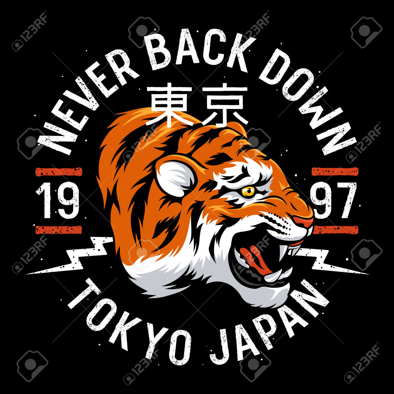 Japanese Tiger Patch Embroidery T Shirt Design Tee Graphics