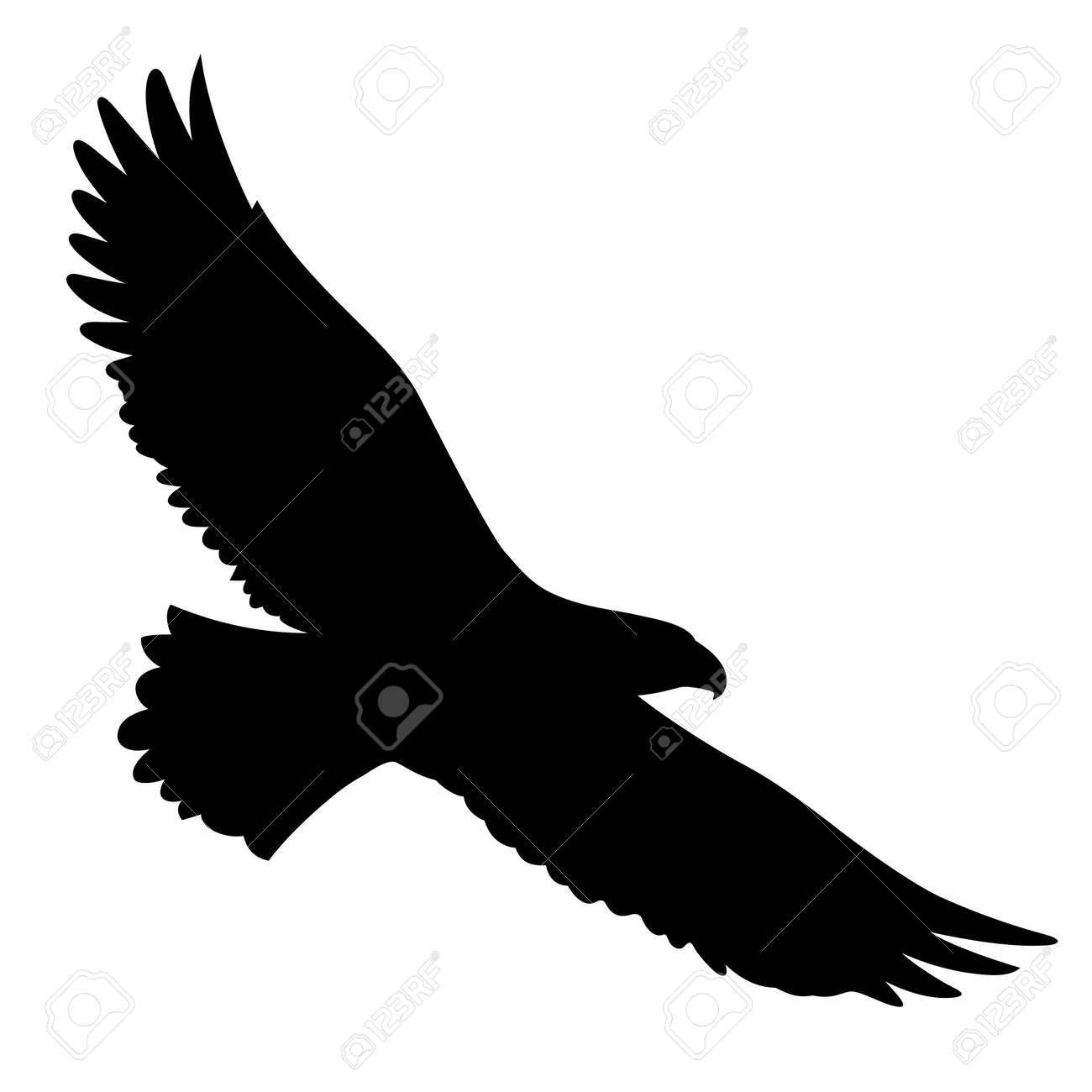 Bald Eagle silhouette isolated on white. This vector illustration can be used as a print on t-shirts, tattoo element or other uses - 110427387