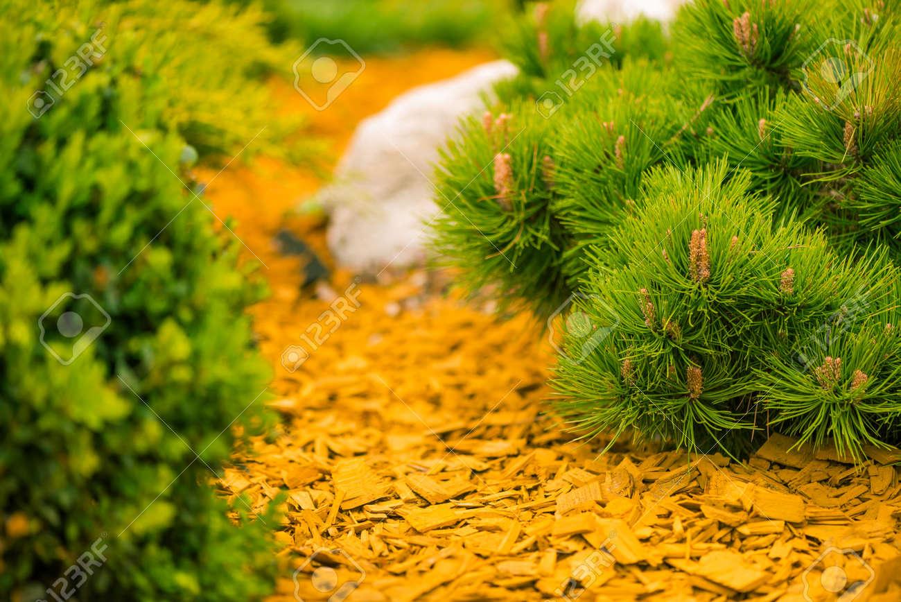 colorful garden ground decoration - 122576618