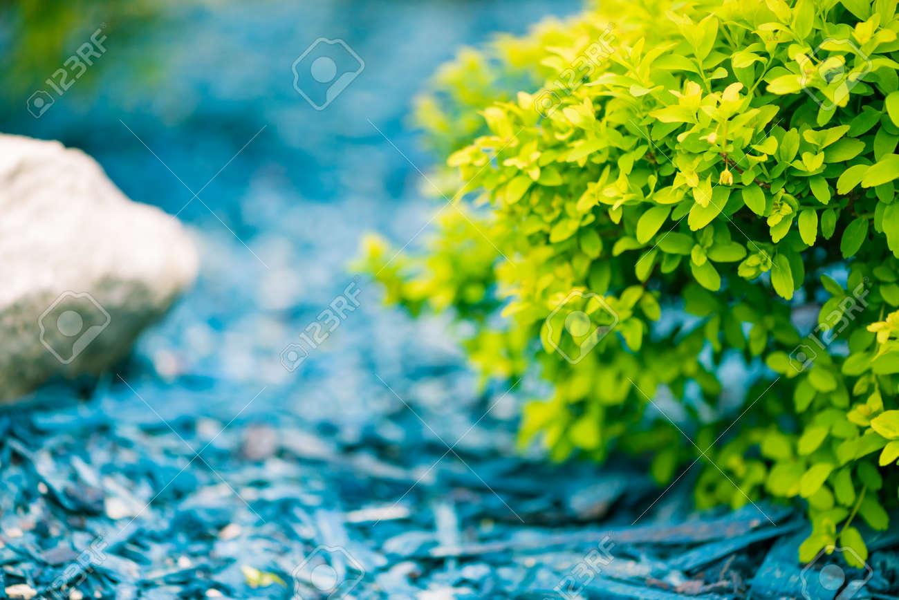 beautiful natural spring decoration - 122576619