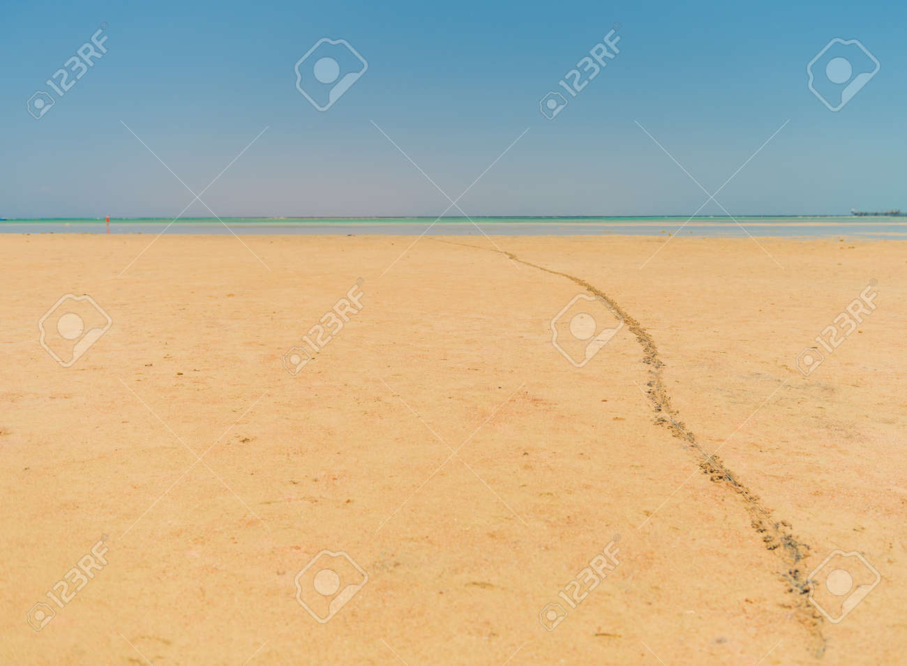 leading line from footprints on sandy beach - 127951875
