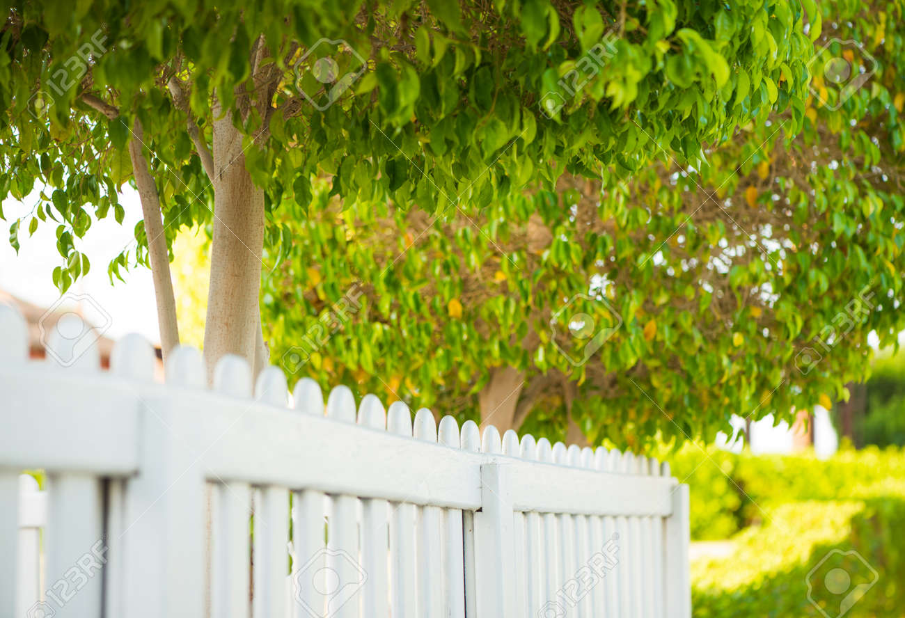 view along summer park white wooden fence - 127951881