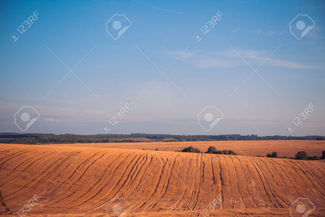 harvested farm field landscape at summer sunset - 131219590