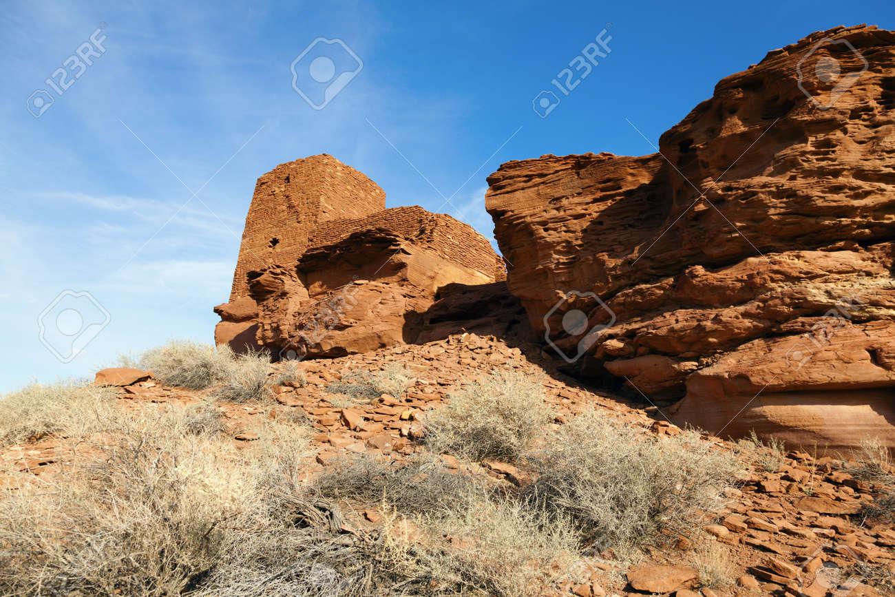 ウパトキ国定公園アリゾナ州のコ...