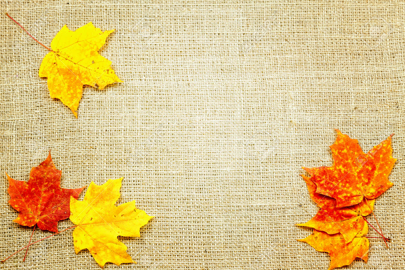 Fall-themed background of burlap and colorful leaves Stock Photo - 16049740