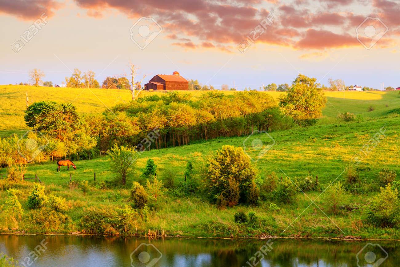 Farm landscape in Central Kentucky - 17729132