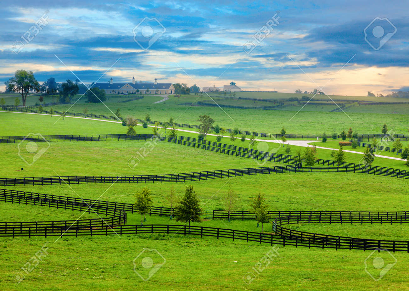 Horse farm in Kentucky Stock Photo - 18221821