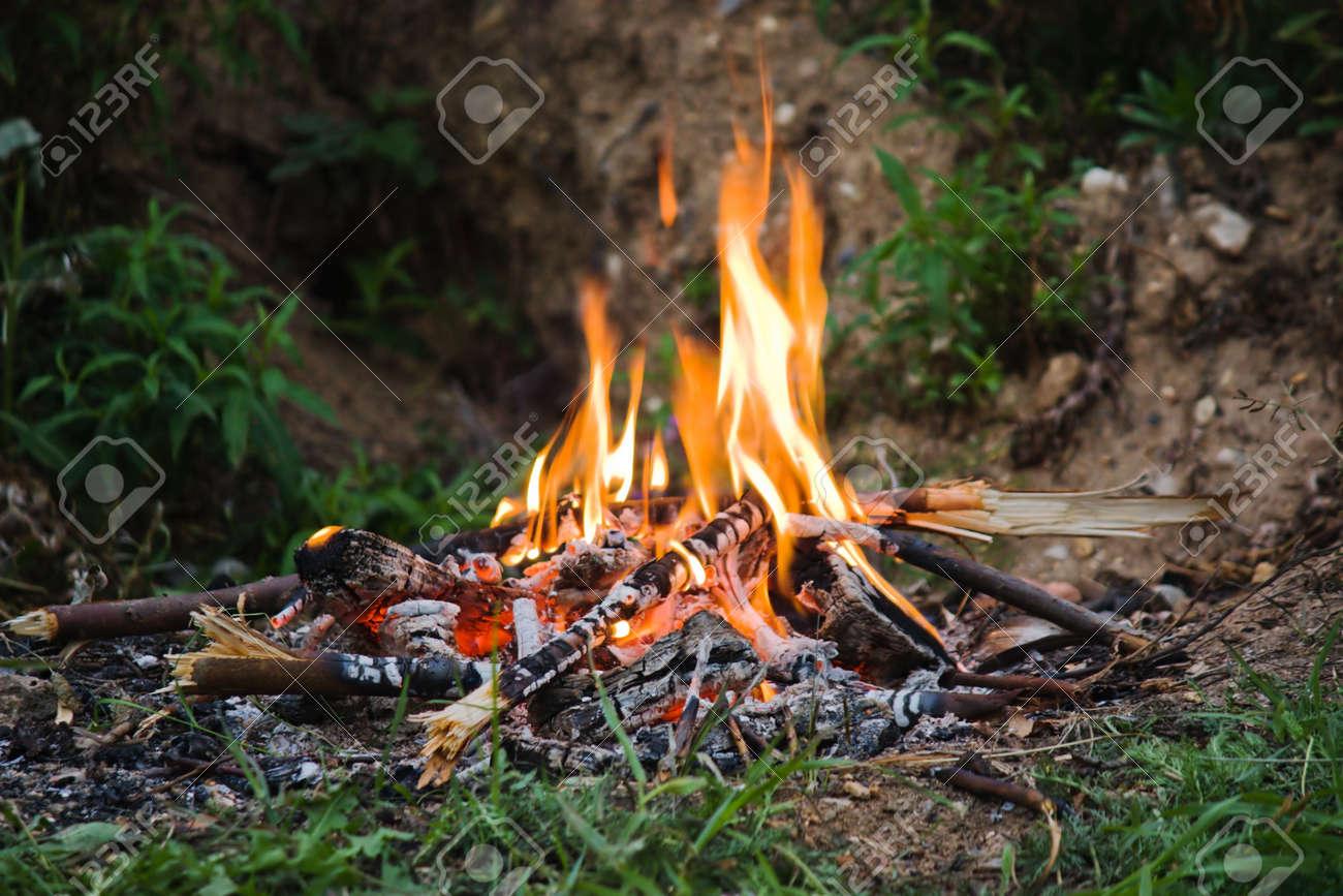 Evening camping bonfire close-up view - 15057459