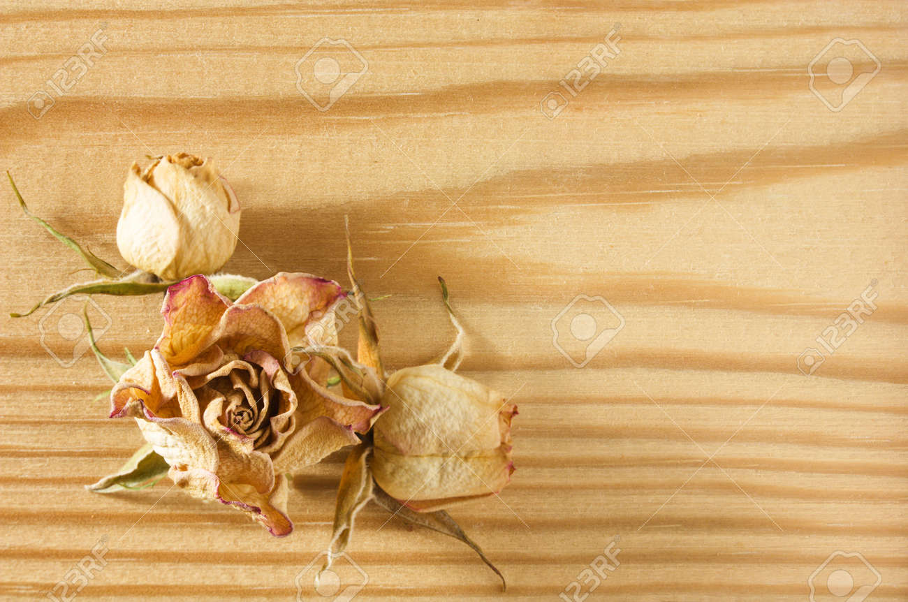 Dried rose flowers lies on a textured rough wooden table top close-up view Stock Photo - 15901710