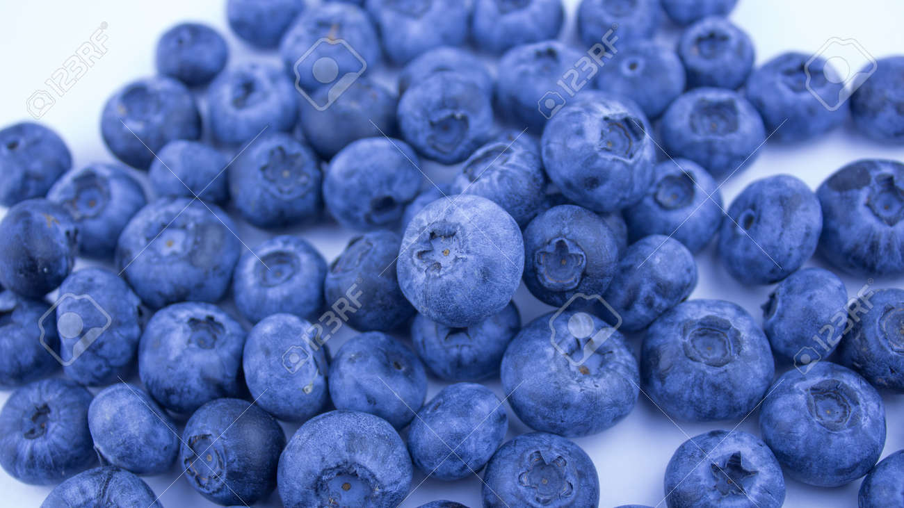 Close-up of ripe juicy blueberries on a white background. - 152885367