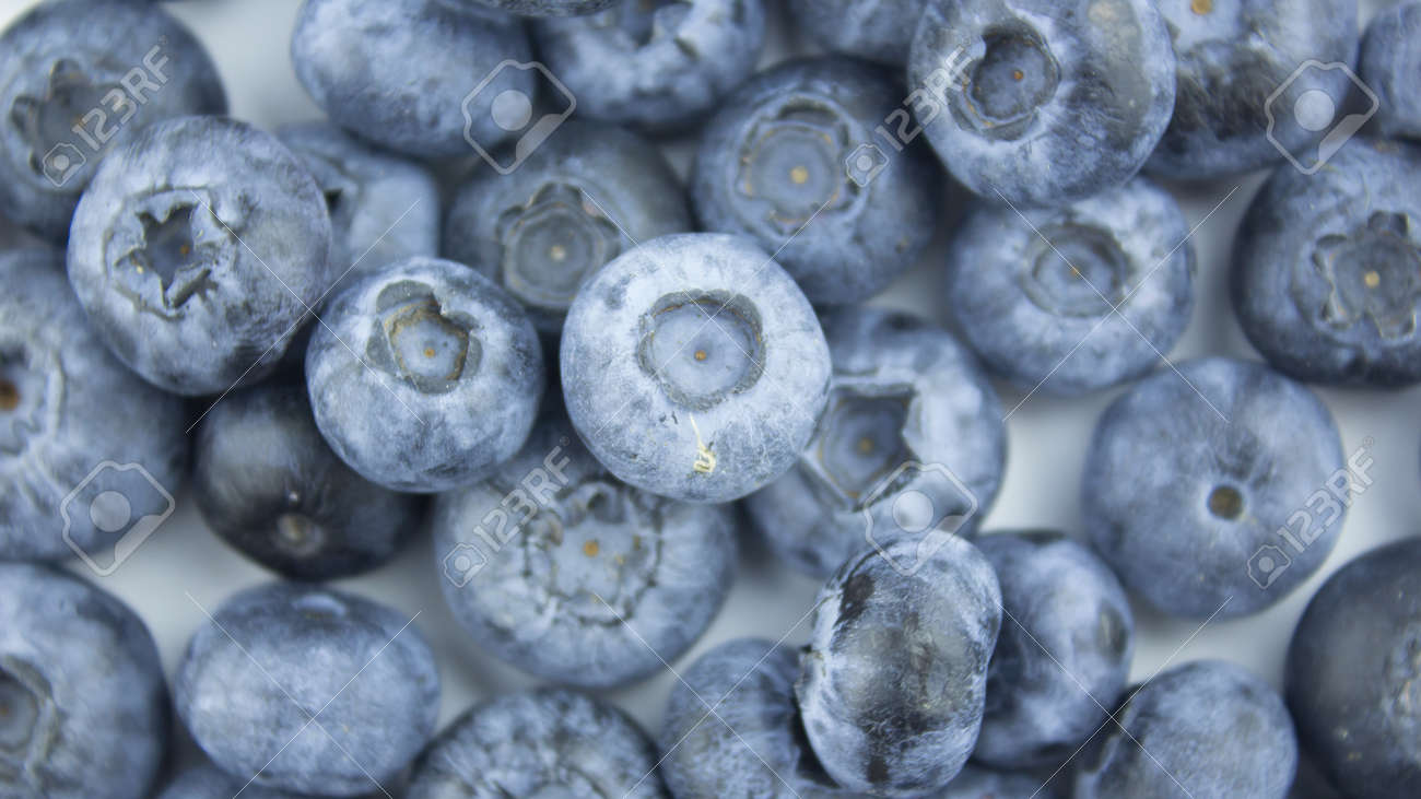 Close-up of ripe juicy blueberries on a white background. - 152947796