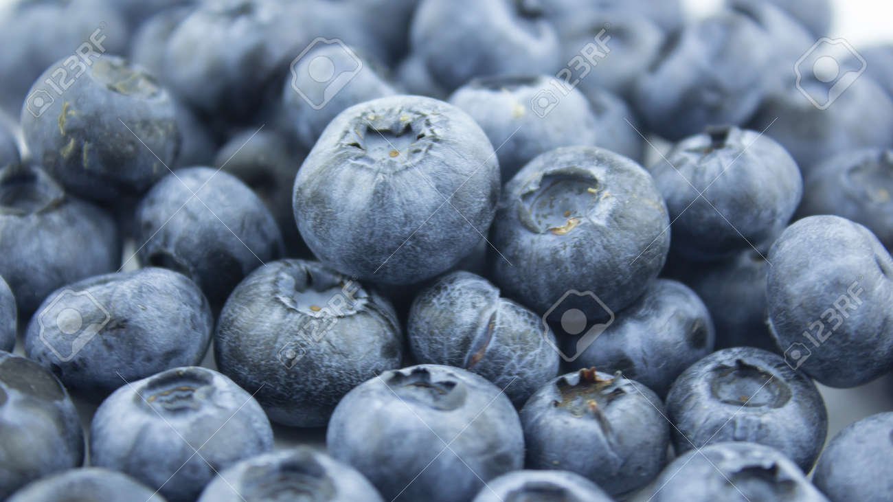 Close-up of ripe juicy blueberries on a white background. - 152885349