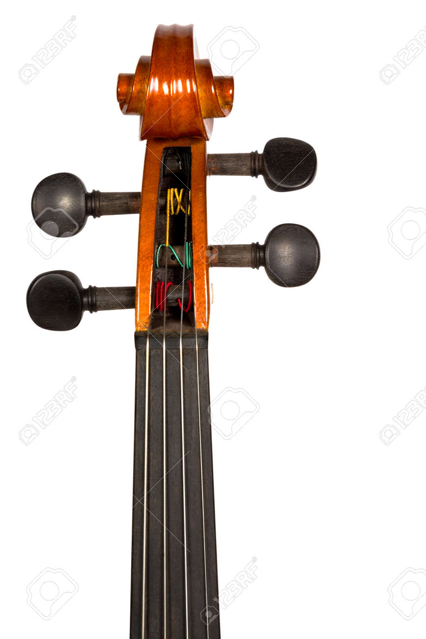 Classic violin head stock and tuning pegs brown color isolated on white background - 32099775