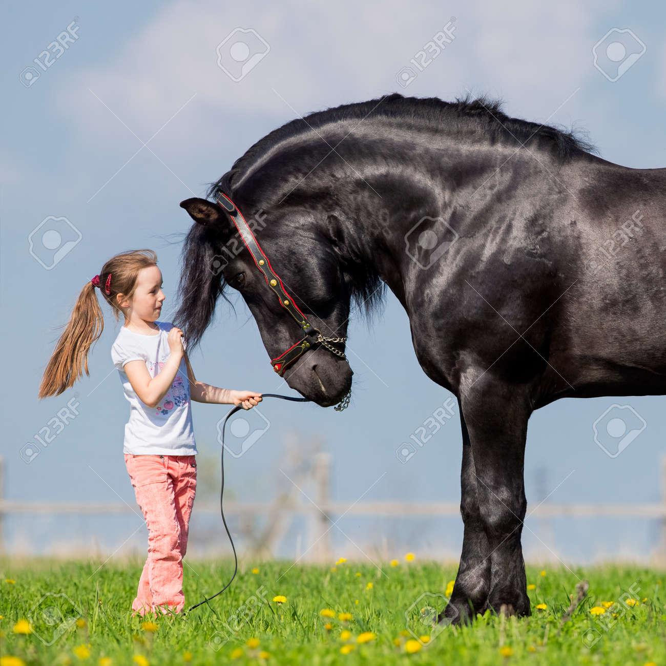photo cheval noir