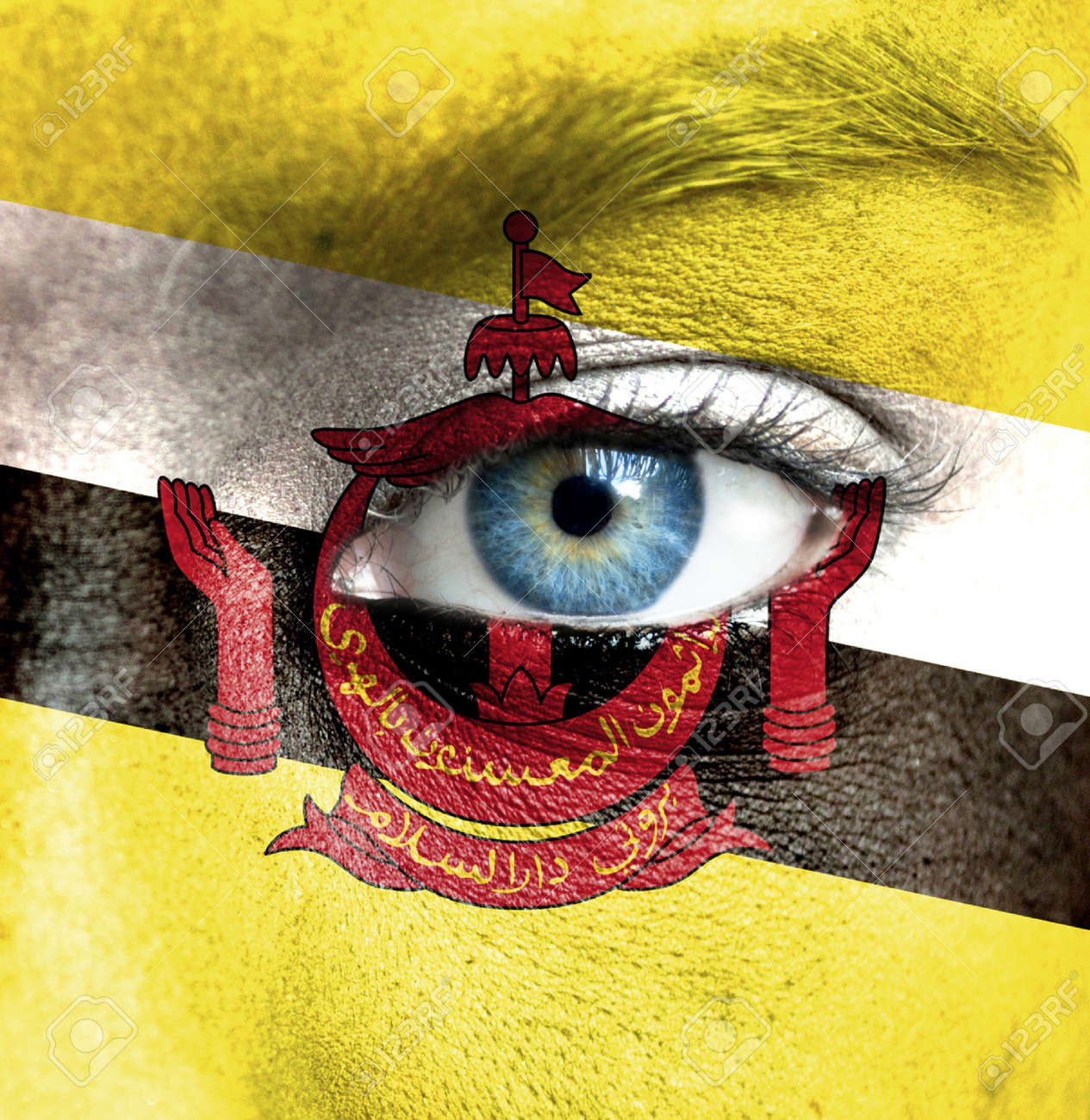 Human face painted with flag of Brunei Stock Photo - 16523633
