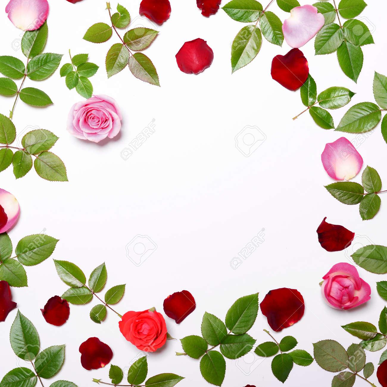 Flat Lay - Marco Hecho De Hermosas Rosas Frescas Pétalos Y Hojas ...