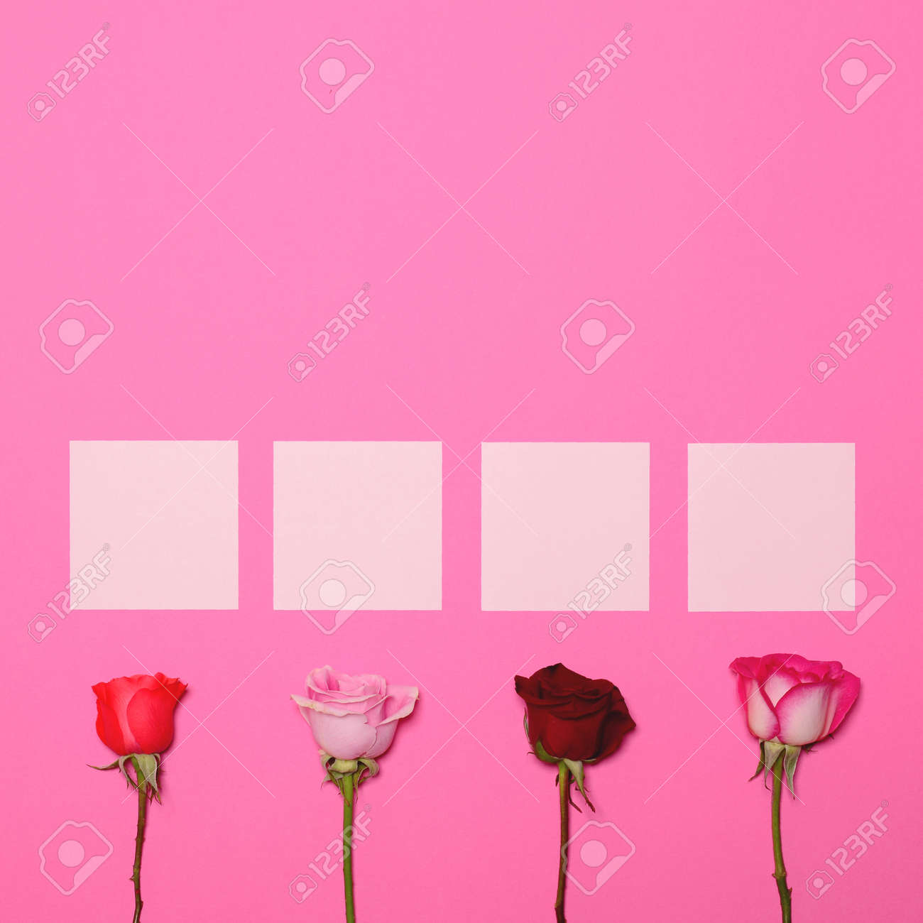 Four Roses On Pastel Pink Background With Blank Papers Above