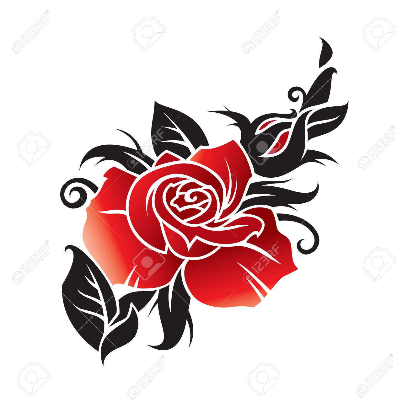 vector graphic of rose Stock Vector - 11650468