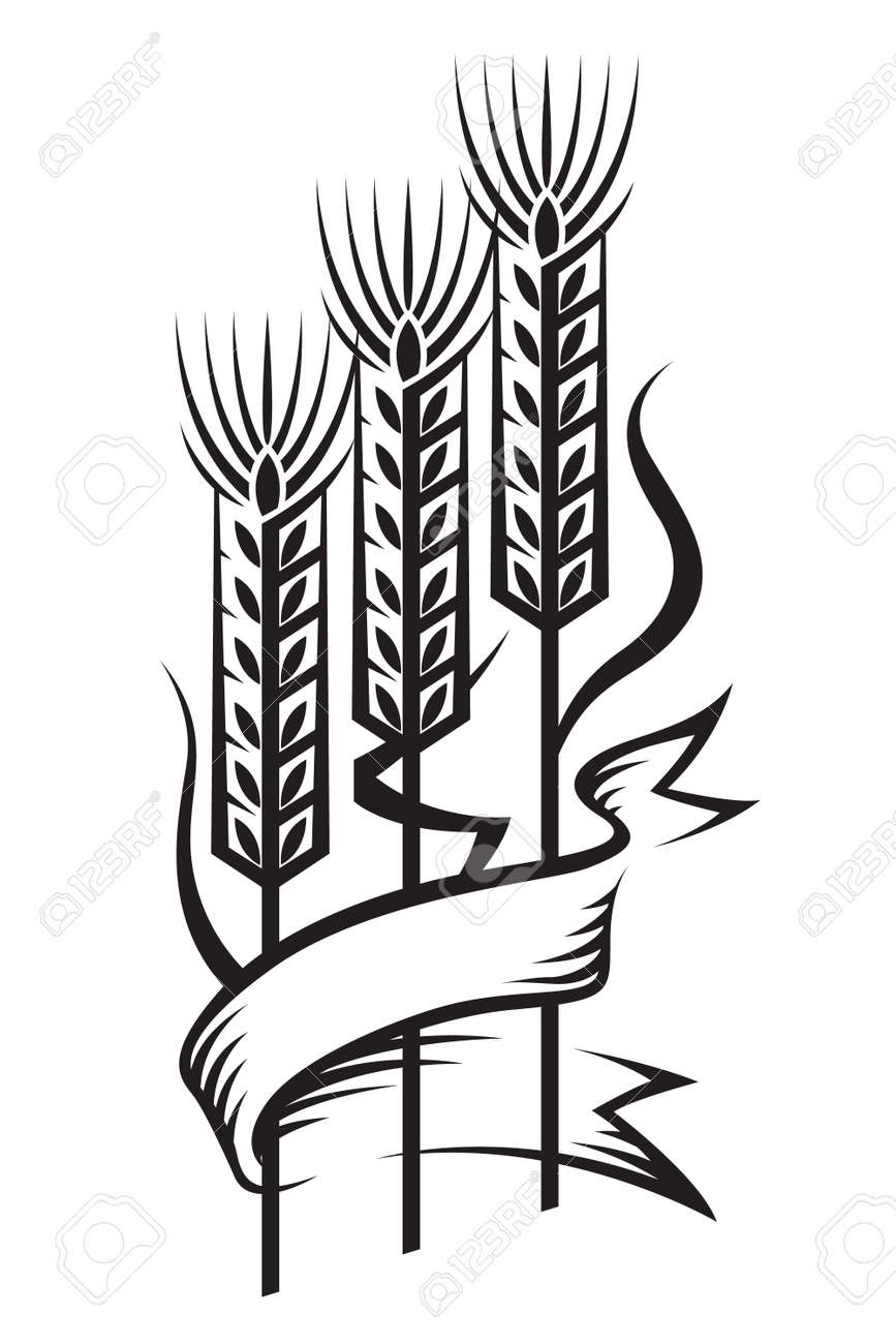 wheat Stock Vector - 11650395