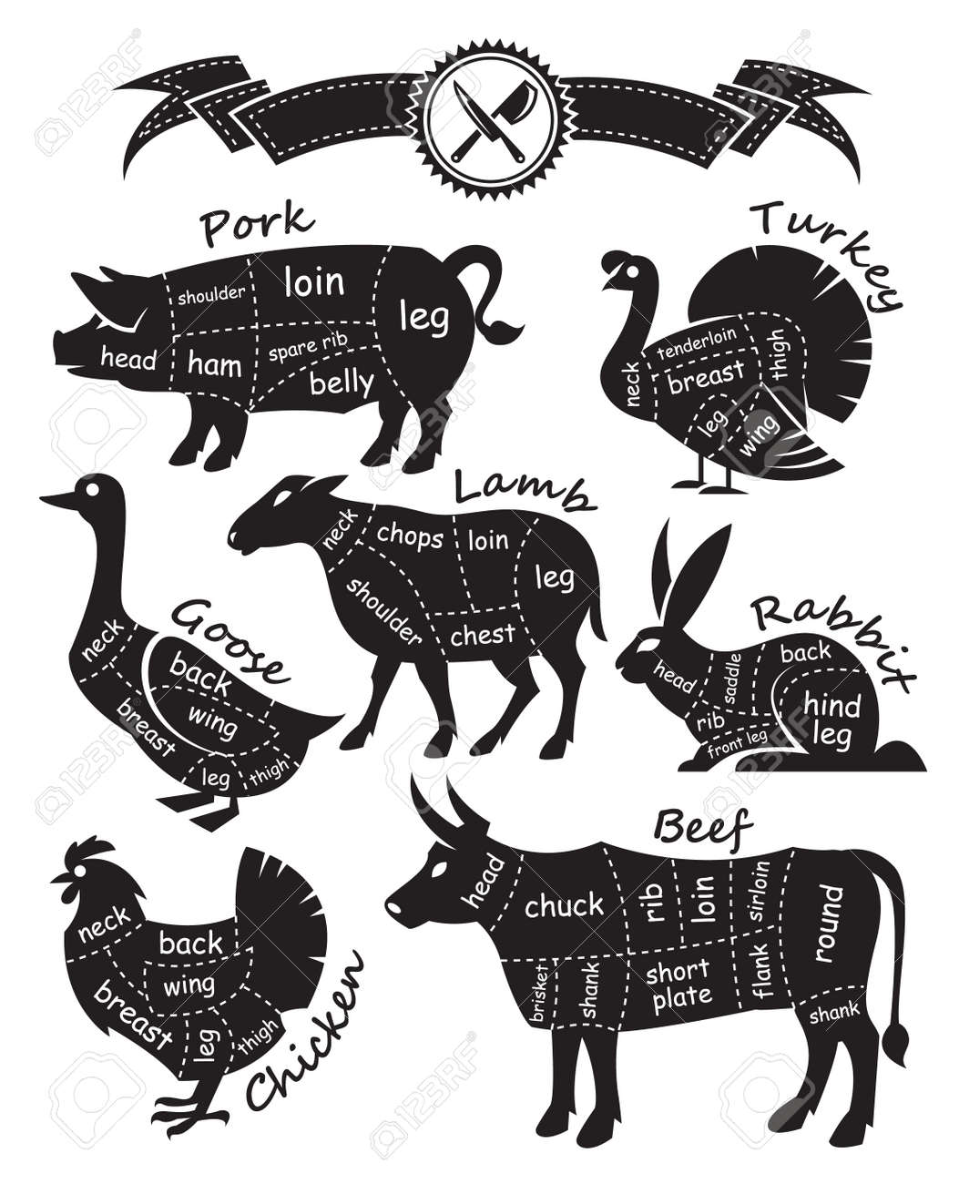 43800 Pork Stock Vector Illustration And Royalty Free Clipart Pig Cut Diagram Monochrome Guide For Cutting Meat