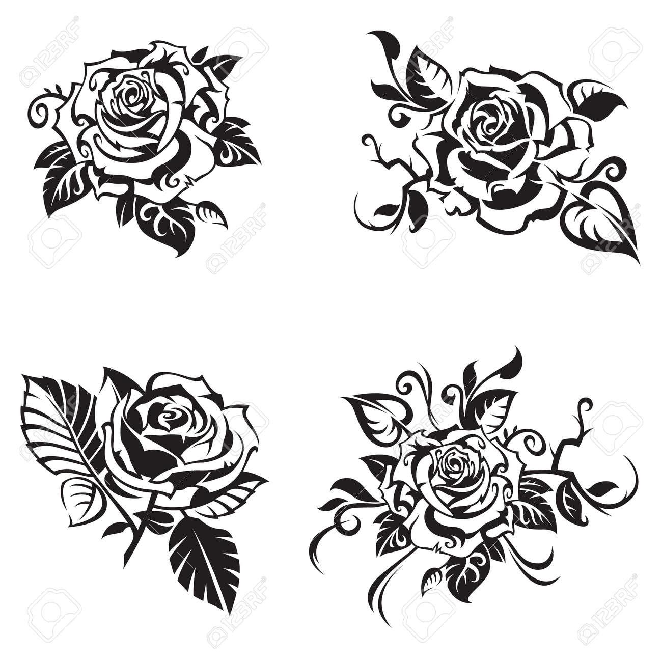 black rose set on white background - 53233614