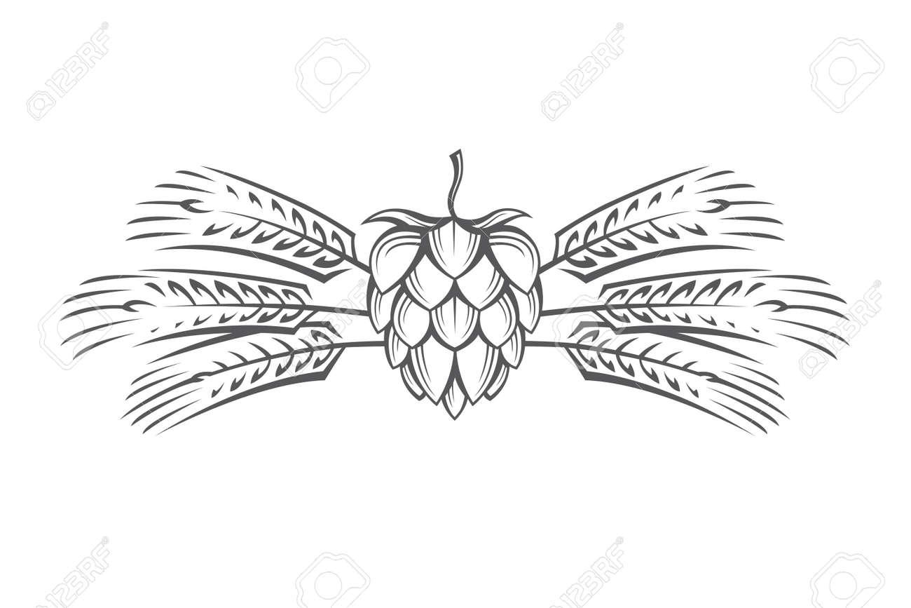 Black illustration of hop and barley ear for brewing. - 71713005