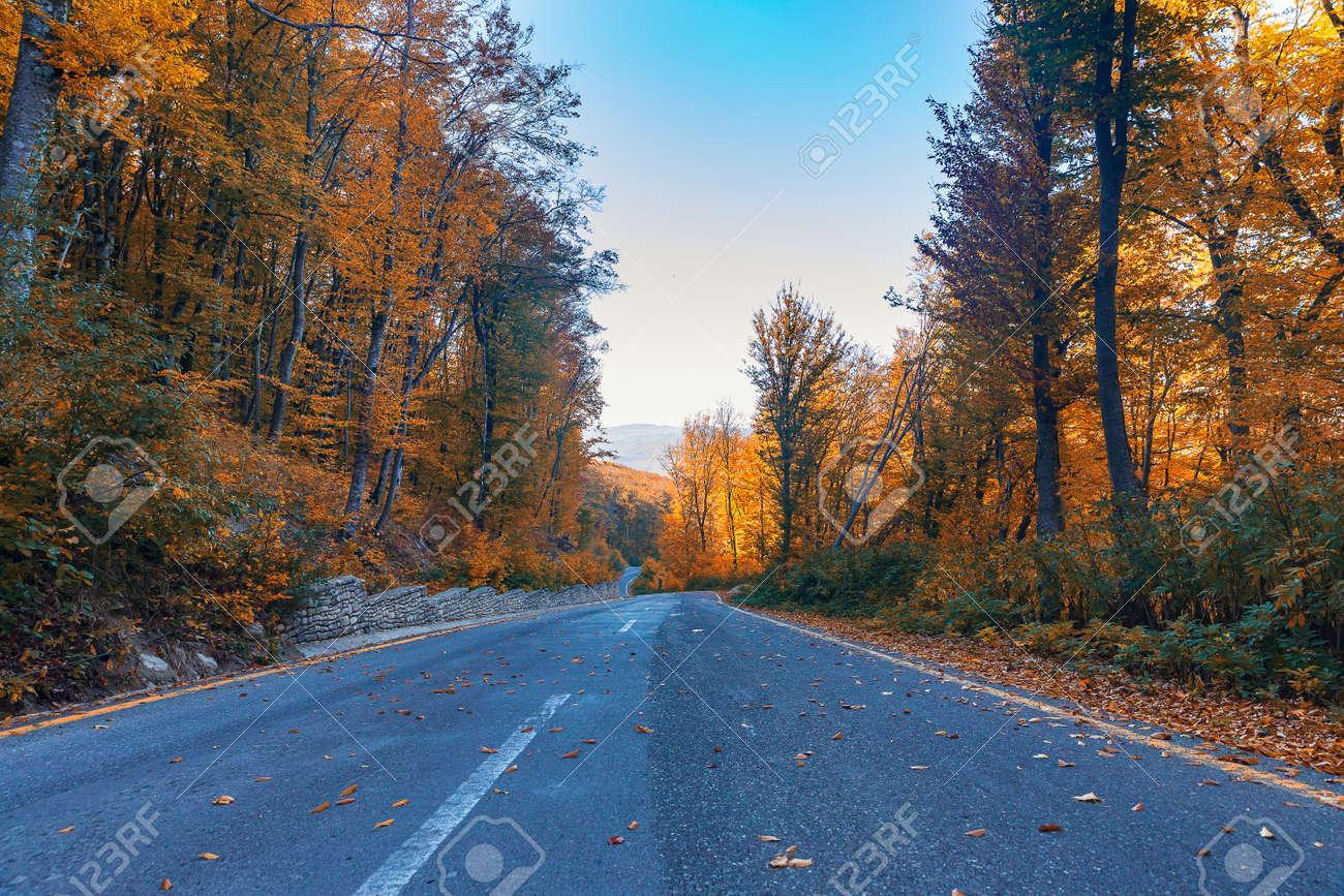 Mountain road through the autumn forest - 157043731