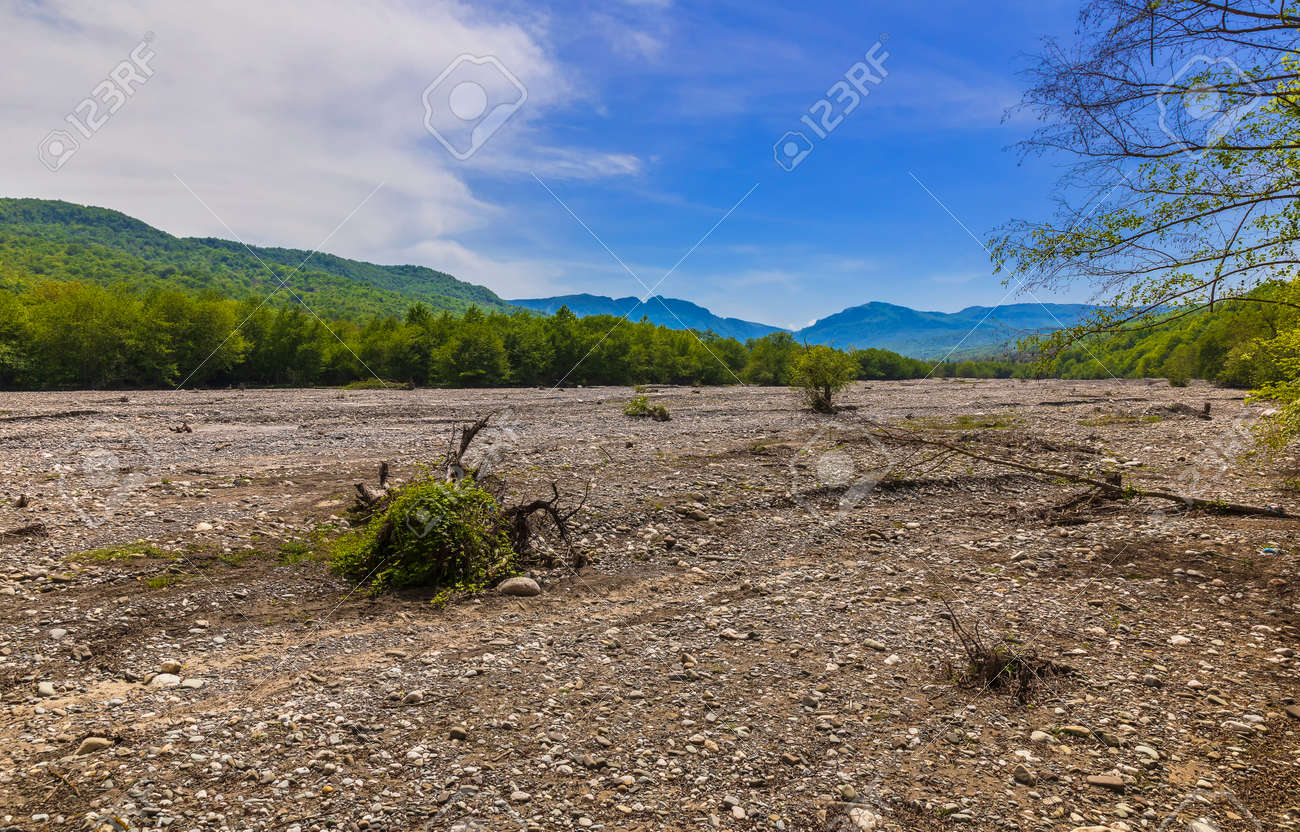 Dry riverbed in the mountains in spring - 169048943