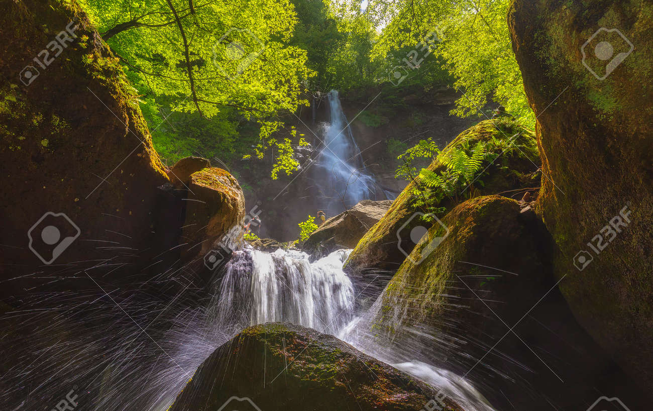 Mountain waterfall in spring forest - 169048944