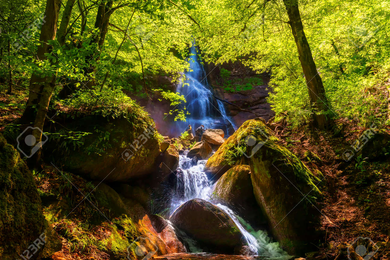 Mountain waterfall in spring forest - 169048947
