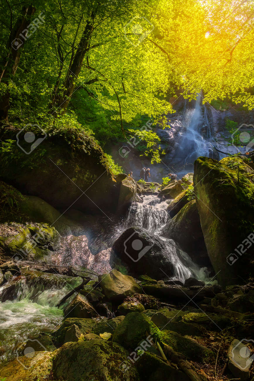 Mountain waterfall in spring forest - 169048958