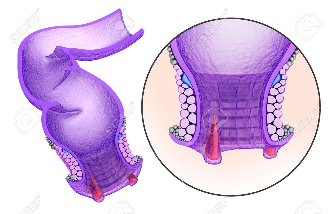 Sbig butt mature woman tube