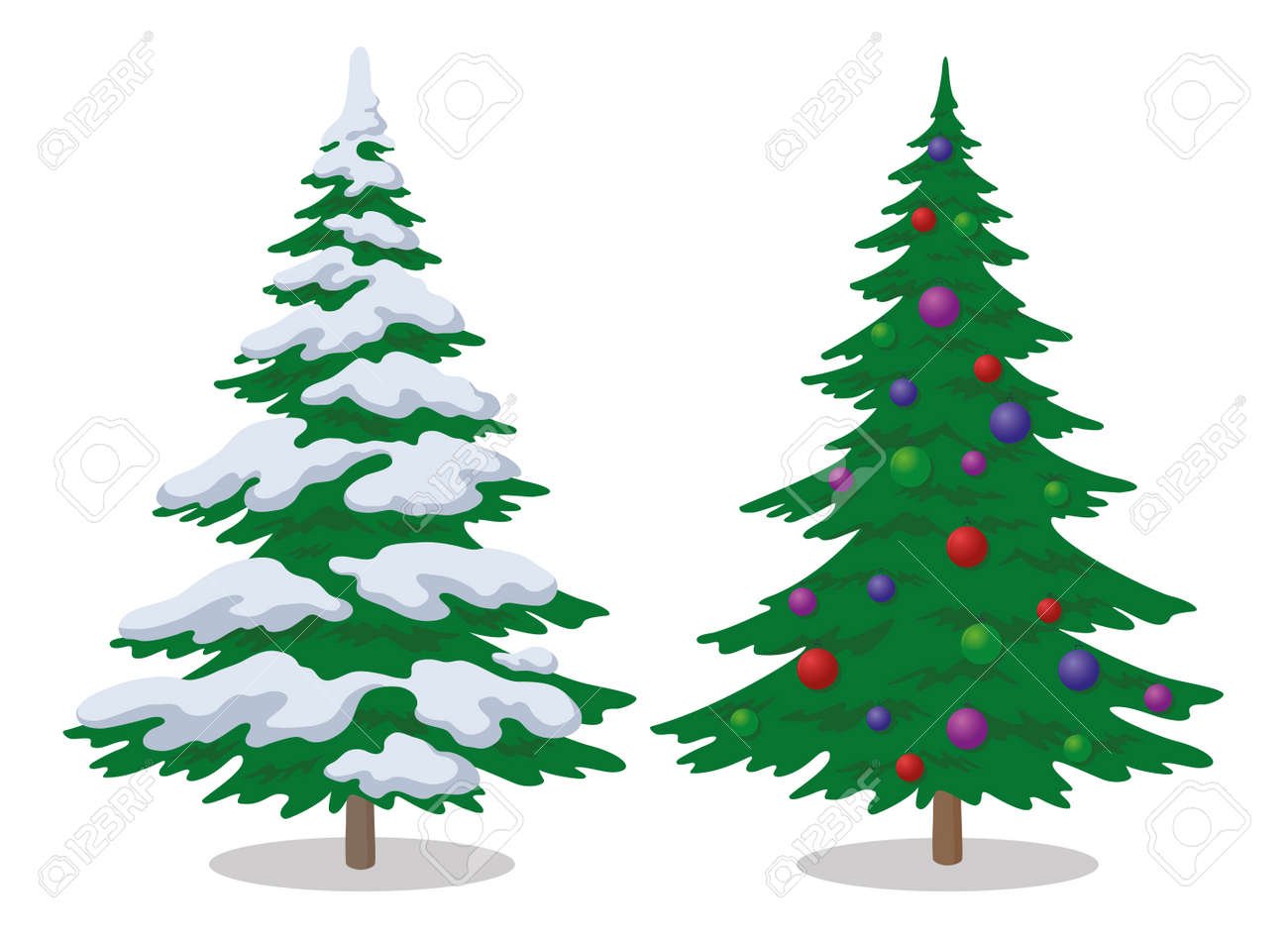 Set of Christmas fir trees with snow and holiday balls, winter symbol, isolated on white. - 20551185