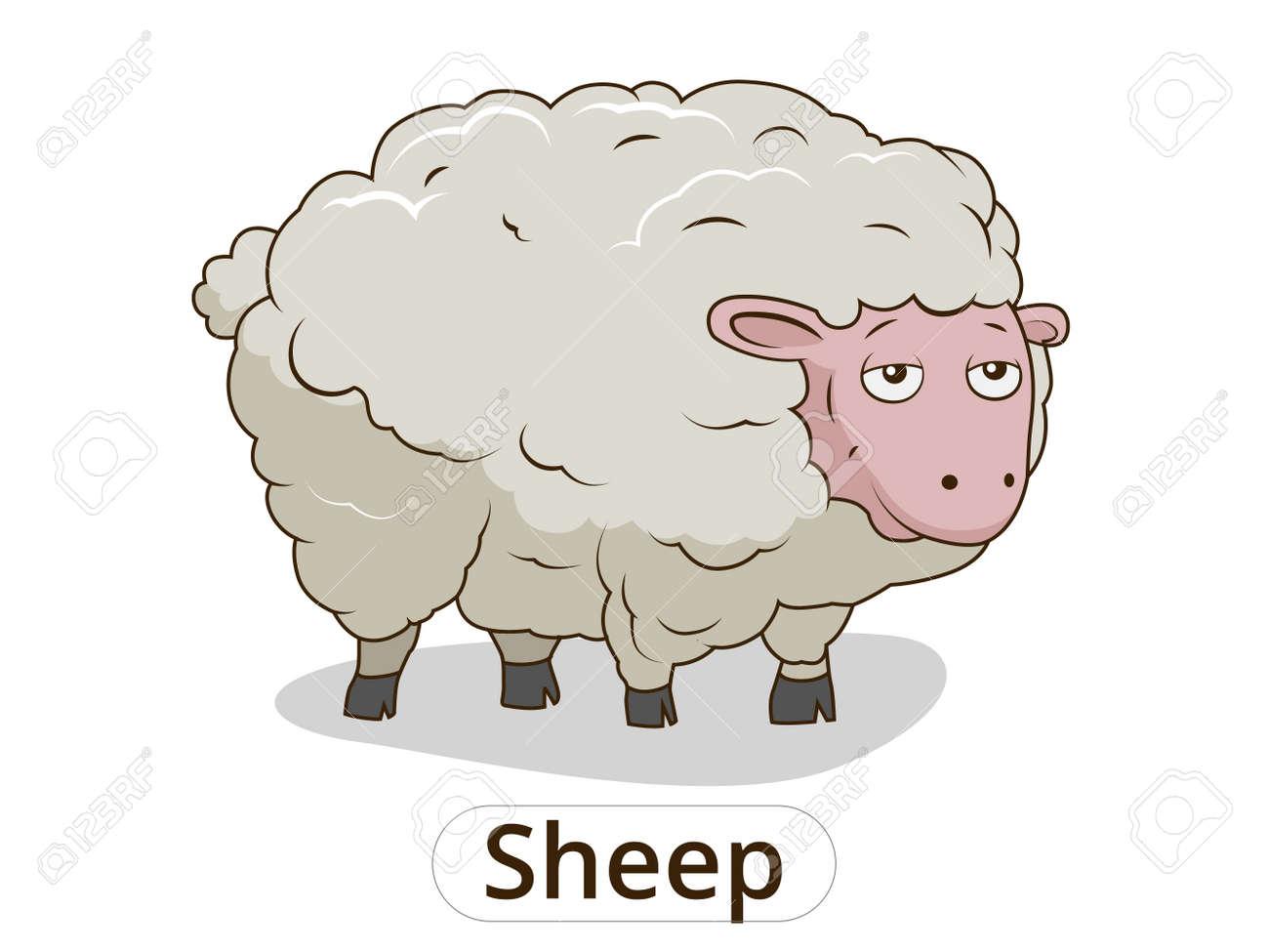 Illustration vectorielle de moutons Cartoon Colorfil animaux pour les enfants