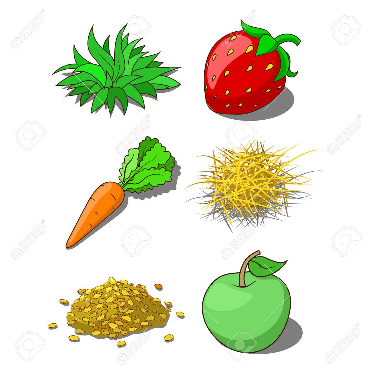 animals food corn grass hay carrot vector illustration royalty free