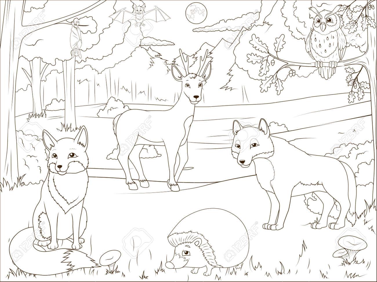 Coloriage Foret Avec Animaux.Coloriage Foret De Livre Avec Des Animaux De Bande Dessinee Jeu Educatif Vecteur Llustration