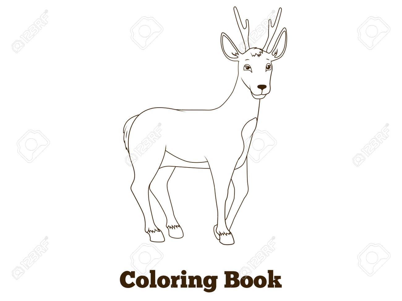 Coloring Book Forest Animal Roe Deer Cartoon For Children Vector Illustration Stock