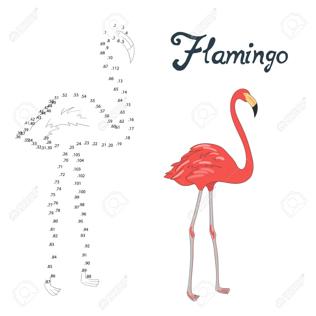 Educational Game Connect The Dots To Draw Flamingo Bird Cartoon