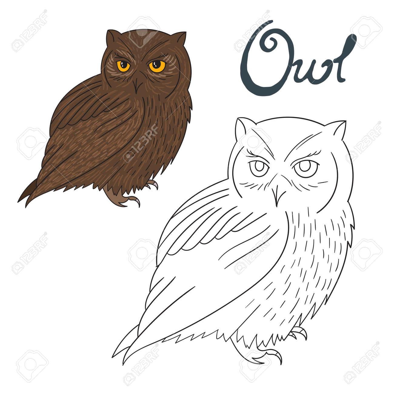 Educational Game Coloring Book Owl Bird Cartoon Doodle Hand Drawn Vector Illustration Stock
