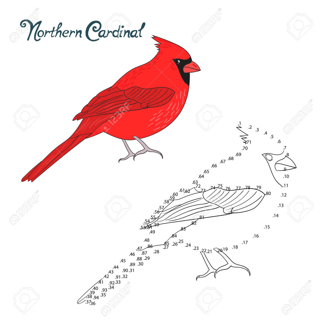 educational game connect the dots to draw nothern cardinal bird
