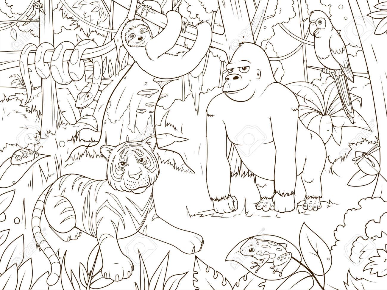 Animales De La Selva Para Colorear De Dibujos Animados Ilustración De Libros De Vectores