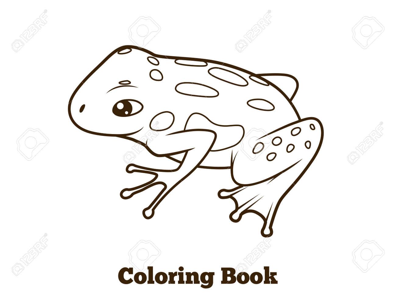 Rana Libro Para Colorear De Dibujos Animados A Mano Ilustración