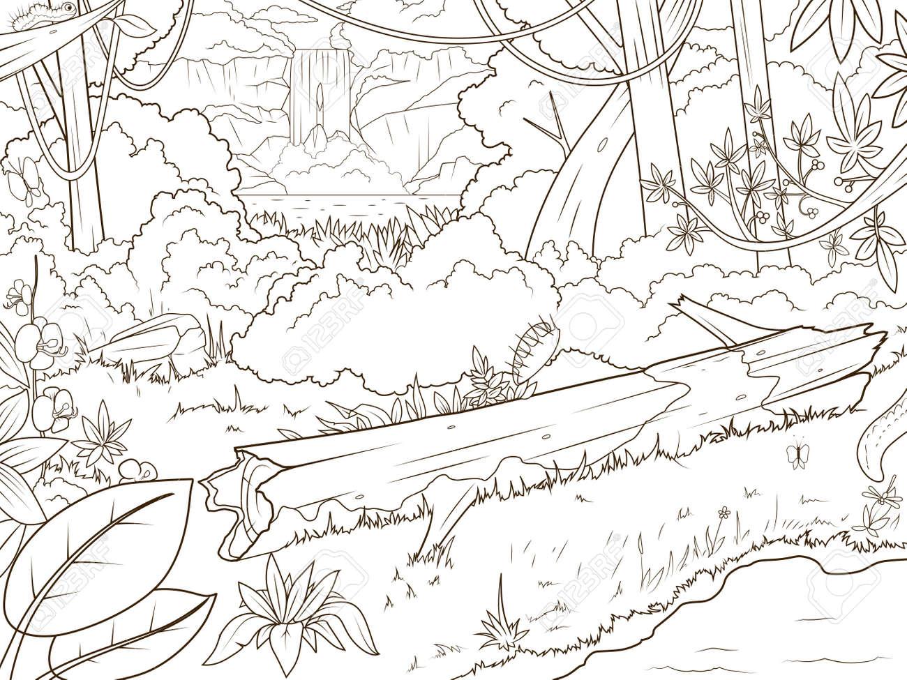 Bosque De La Selva Con El Libro Para Colorear Waterfal Dibujos Animados Ilustración Vectorial